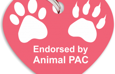 Animal PAC Endorses Bryan Caforio for Congress